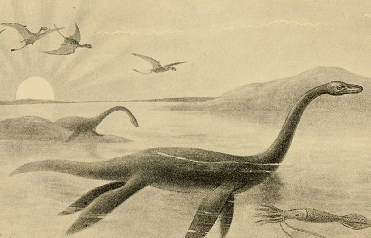 1200x771 A Brief History Of The Loch Ness Monster