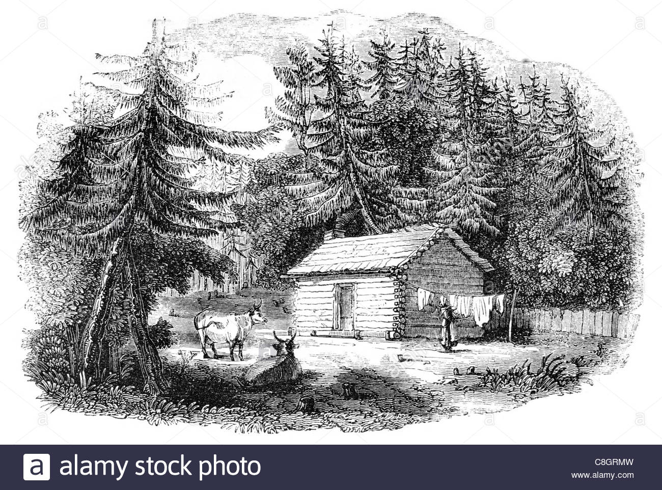 1300x962 Historic Log Cabin Black And White Stock Photos Amp Images