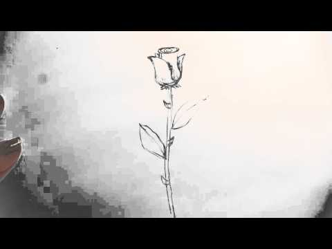 480x360 How To Draw A Long Stem Rose