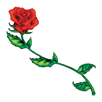 350x350 Long Stem Rose Temporary Tattoo Long Stemmed Rose Tattoo