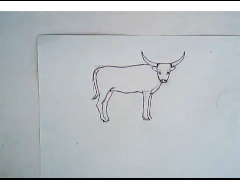 480x360 How To Draw A Long Horn Cattle (Simple Drawing)