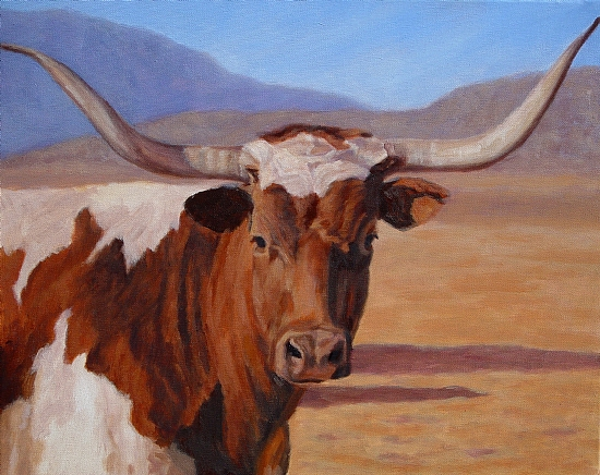550x436 Love My Longhorns {{Just Because}} Texas, Cow