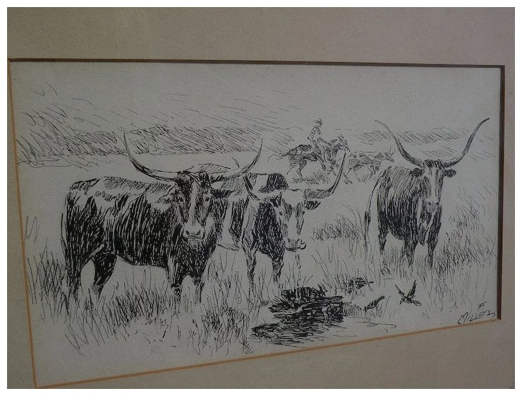 740x561 Southwest Art Signed Ink Drawing Of Longhorn Cattle Possibly New