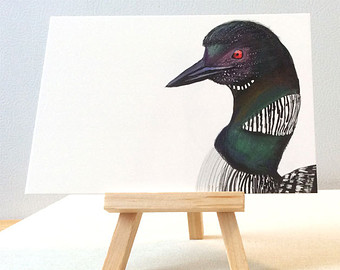 340x270 Common Loon Drawing Etsy
