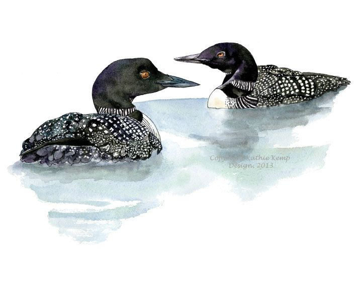 720x575 Loons Pair Pen And Ink Watercolor Painting Gift Ideas Lake Cottage