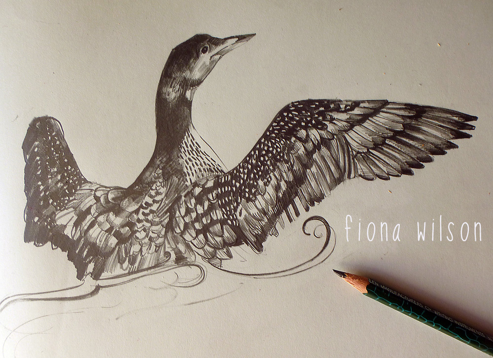 1000x728 Loon Drawing After Attending The Scottish Tattoo
