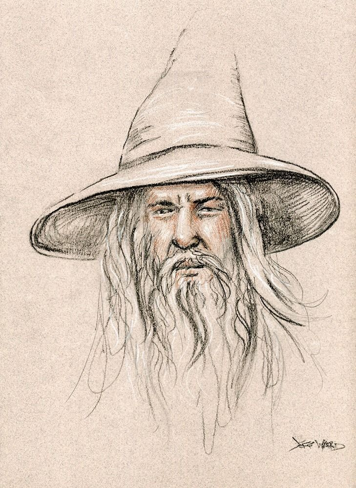 729x1000 Gandalf Lord Of The Rings Tolkien Drawing By Jeff Ward