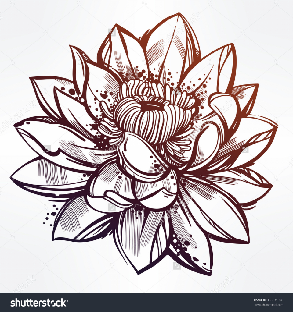 Lotus drawing images at getdrawings free for personal use 960x1024 lotus flower drawing designs hand drawn lotus flower lily motif mightylinksfo Gallery