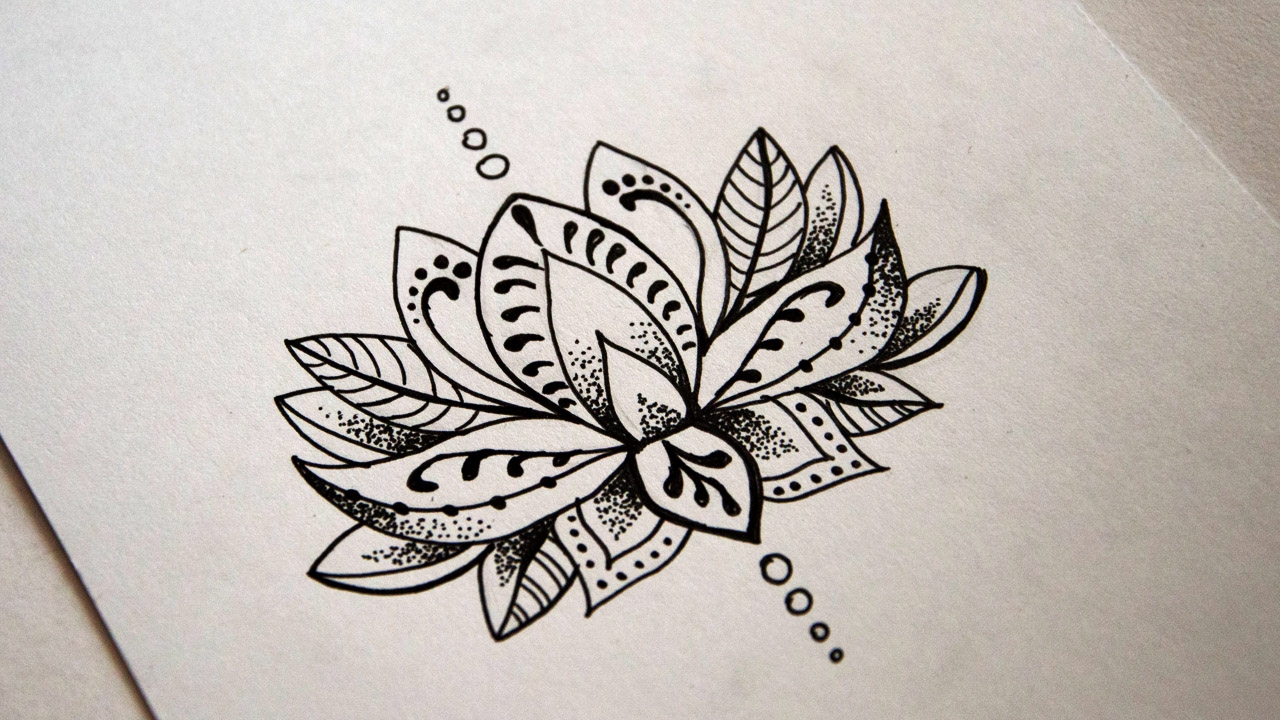 Black Line Flower Drawing : How to draw a daisy flower step by tutorial jl doodles