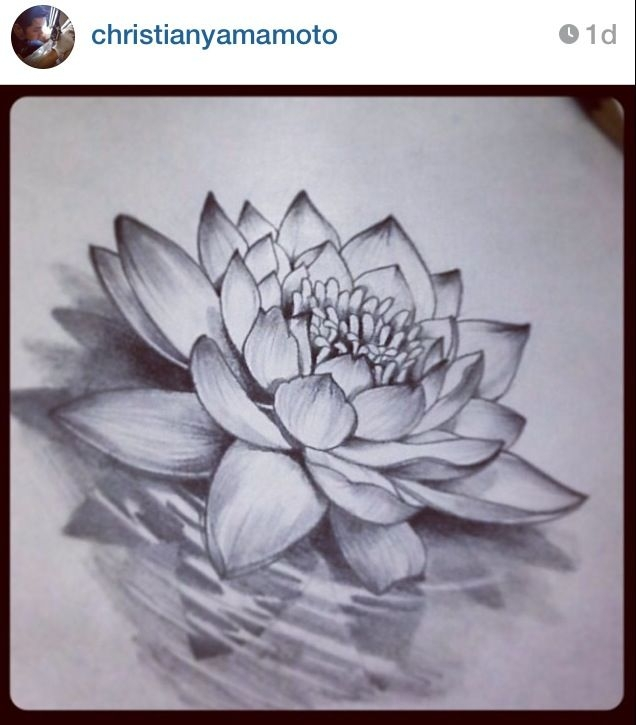 Pencil Sketches Of Lotus Flower