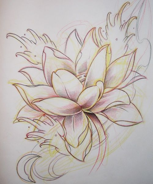 Lotus flower drawing sketch at getdrawings free for personal 500x603 lotus flower sketch tattoos white ltbgtlotus flowerltgt white ltb mightylinksfo