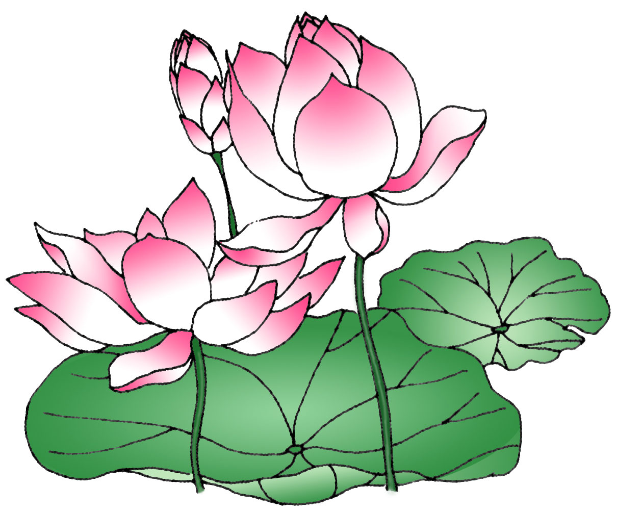 Lotus flower pencil drawing at getdrawings free for personal 1210x1004 sketch clipart lotus flower mightylinksfo