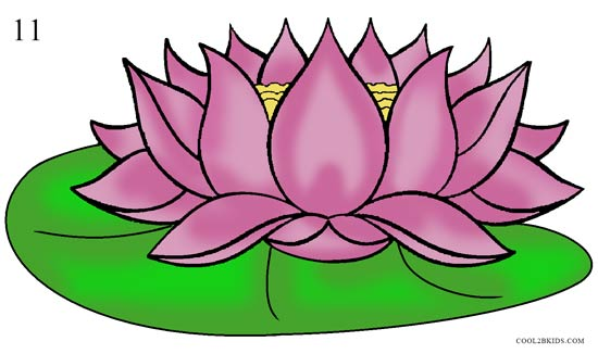 550x326 How To Draw Lotus Flower Step By Pictures Cool2bKids