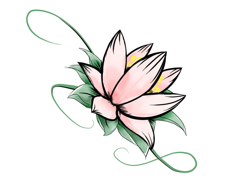 1024x768 Drawing Of A Lotus Flower Lotus Clipart Simple