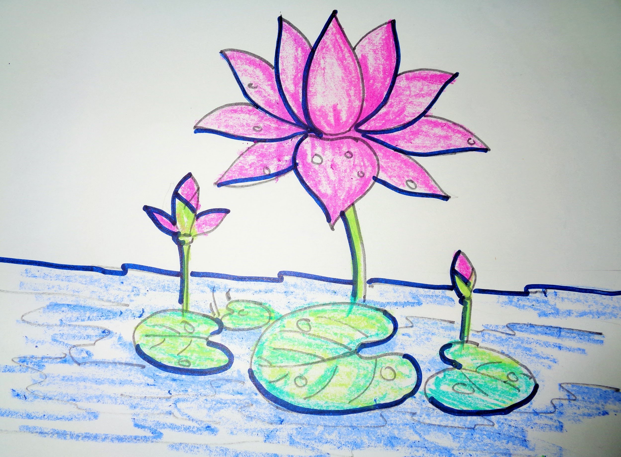 2494x1835 Drawing Of Lotus Flower With Leaf How To Draw Lotus Step By Step