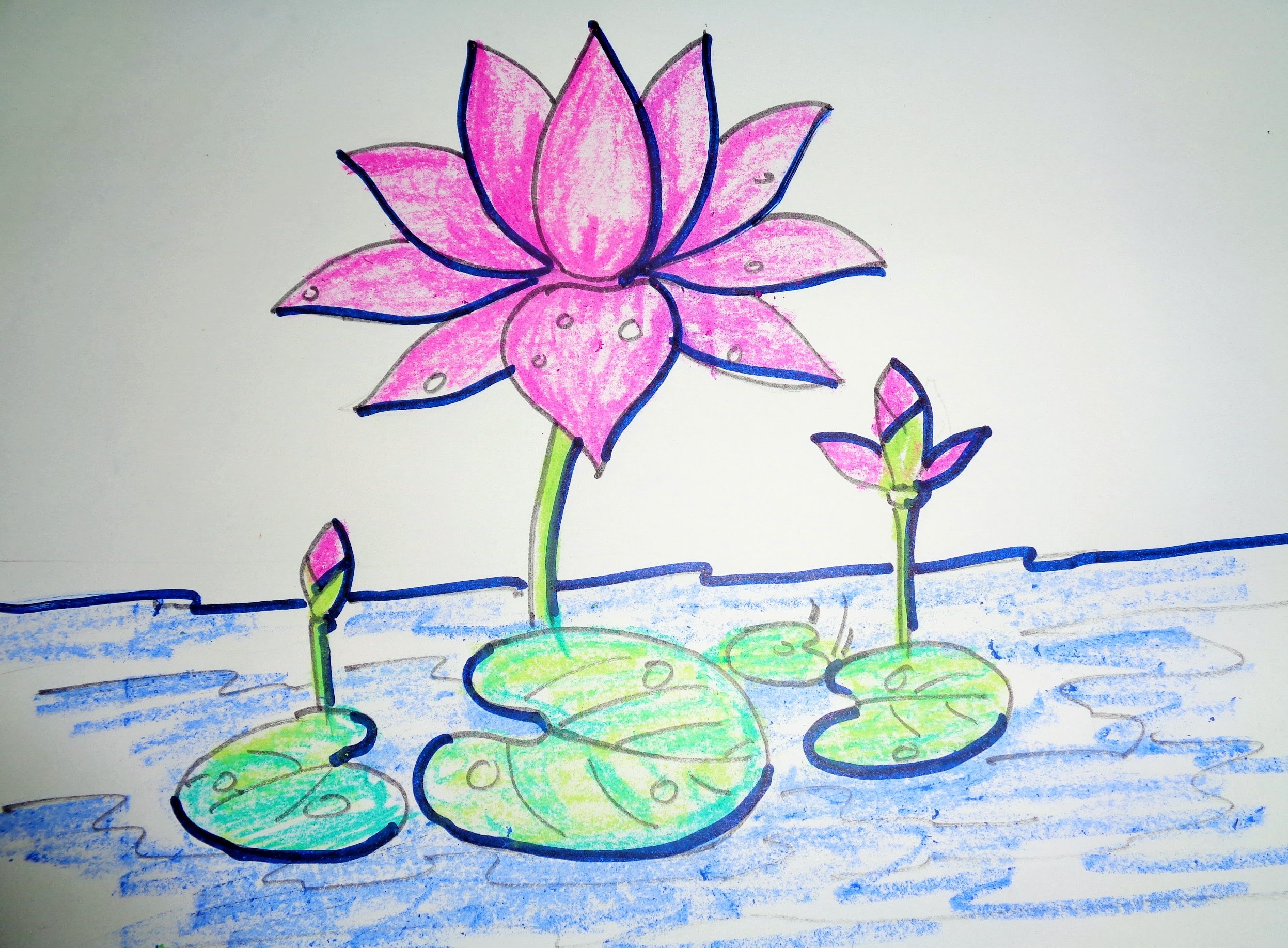 2494x1835 How To Draw Lotus Step By Step