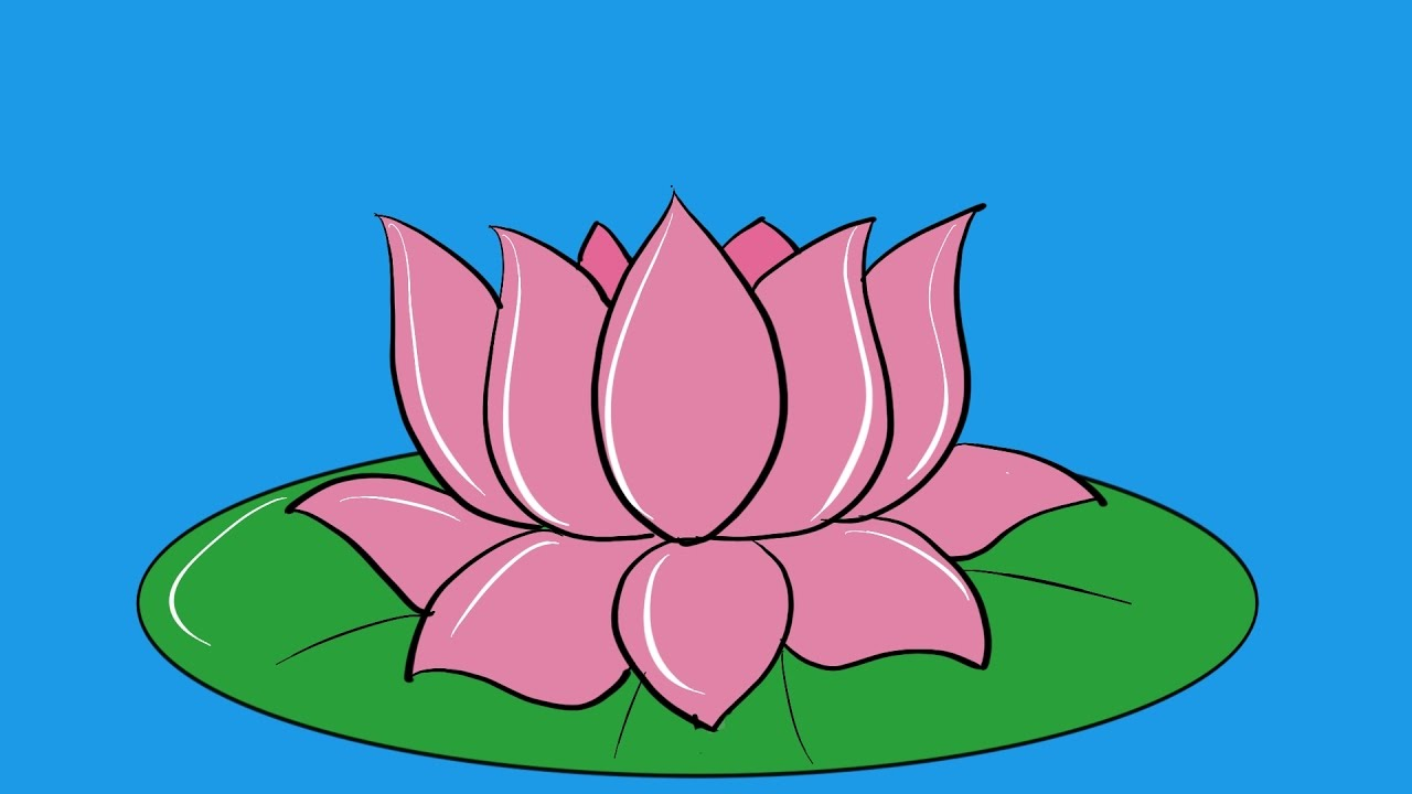 1280x720 How To Draw Lotus Flower Coloring Page Coloring Pages For Kids