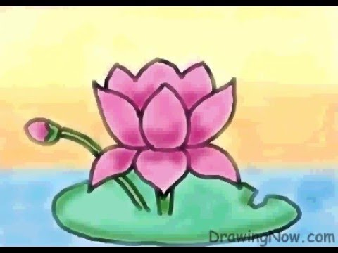 480x360 How To Draw A Lotus