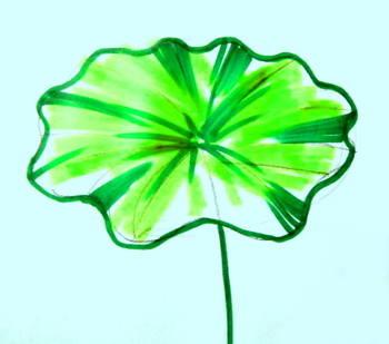350x309 Lotus Leaf Drawing 047