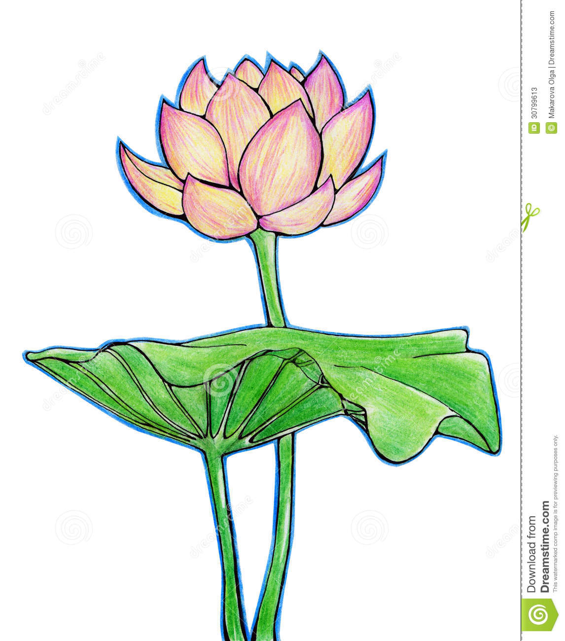 1146x1300 Lotus Leaf Drawing Images Archives
