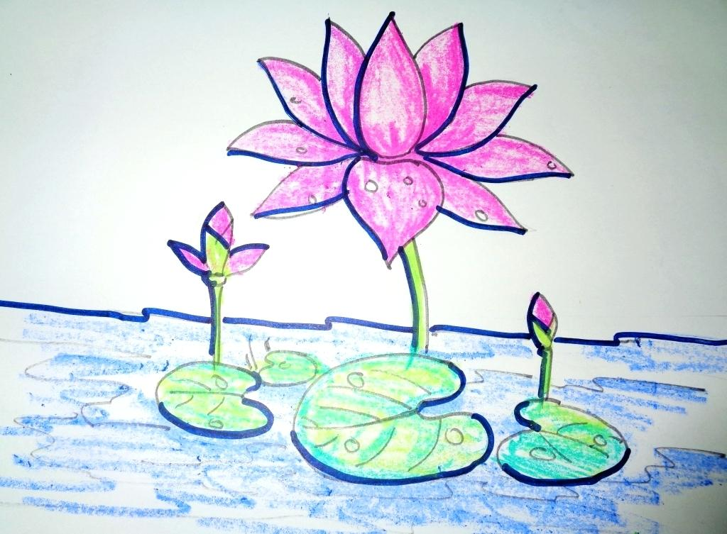 1024x753 Draw A Lotus Flower Drawn Lotus For Kid Flower Learn To Draw Lotus