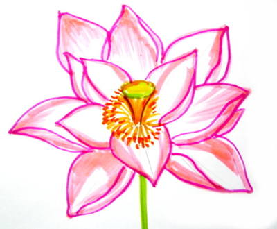 400x330 Flower Drawings With Color Drawing And Crafts