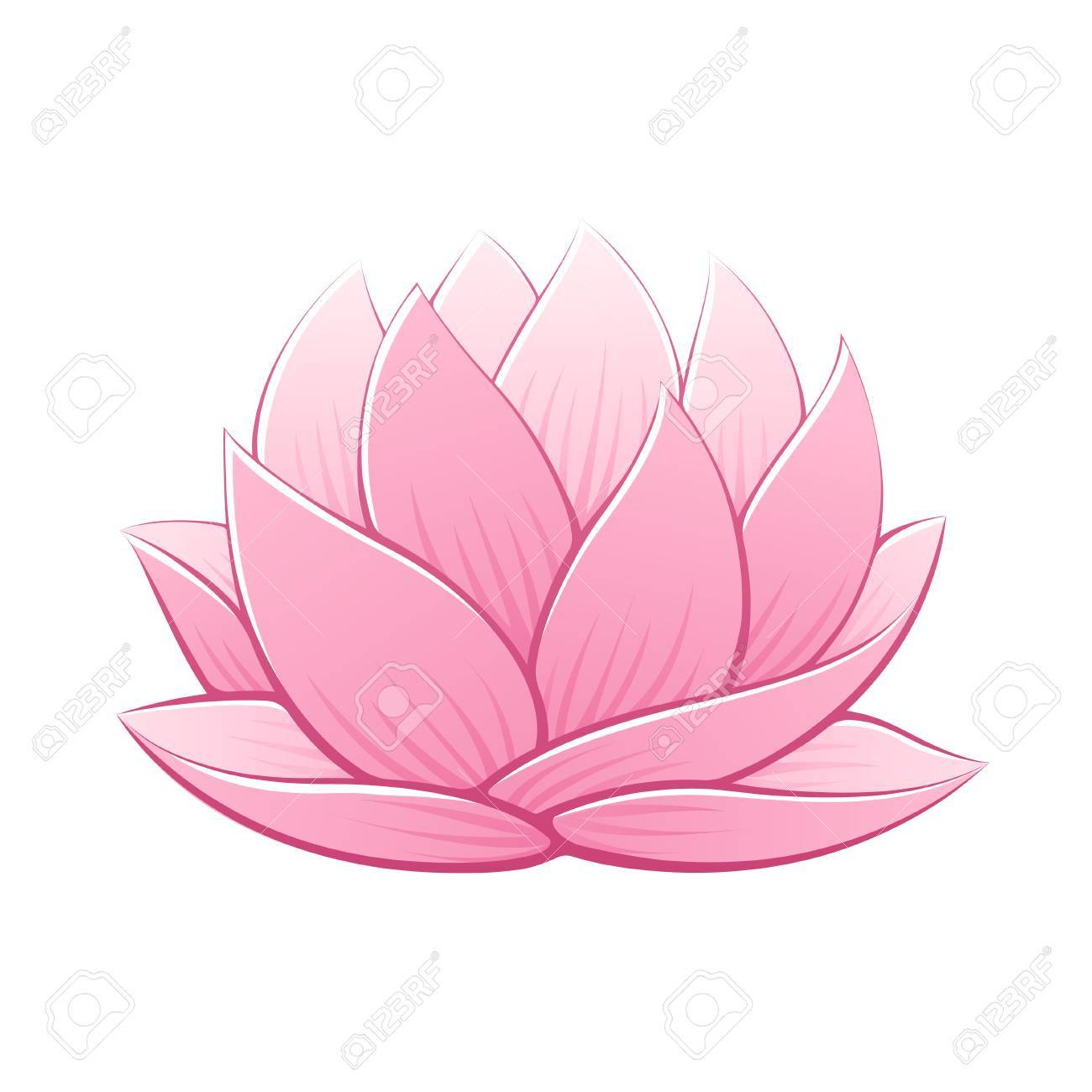 1300x1300 Pink Lotus Flower Vector Illustration. Beautiful Realistic