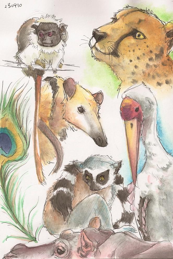 663x996 I Love Drawing Animals 2 By Catzayu