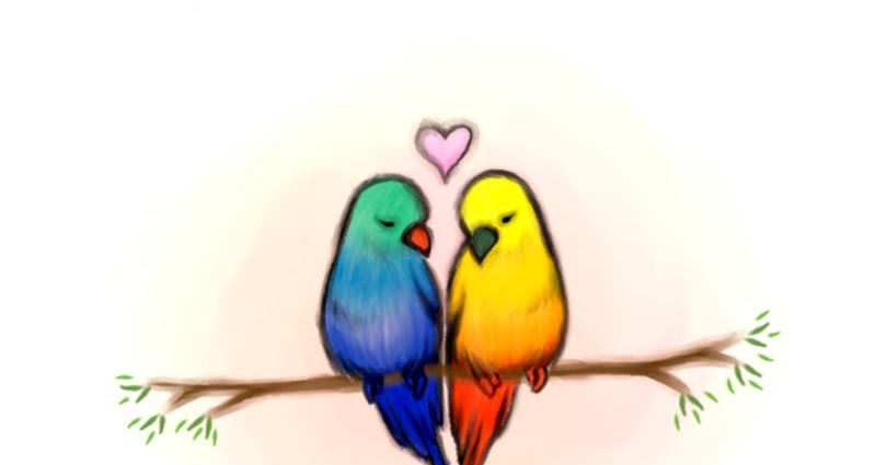 810x425 Love Bird Drawings In Color Wallpapers Background
