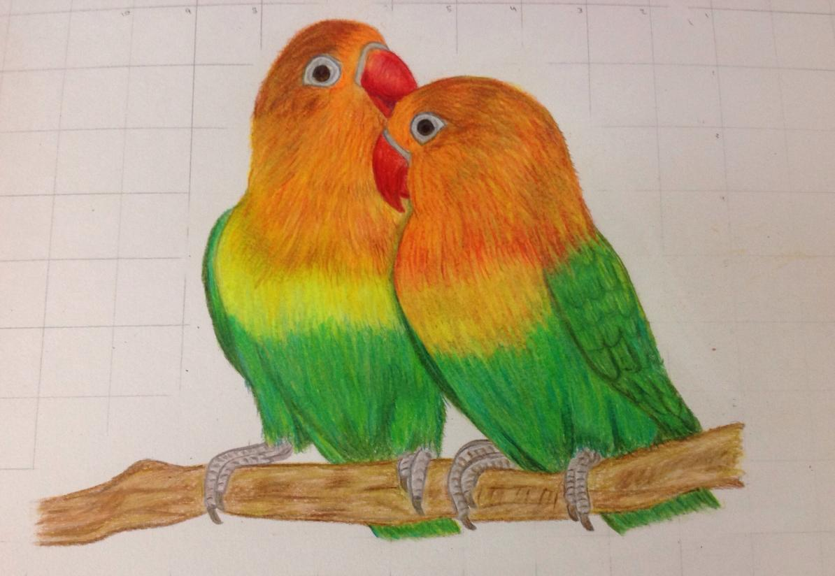 1194x824 Love Birds