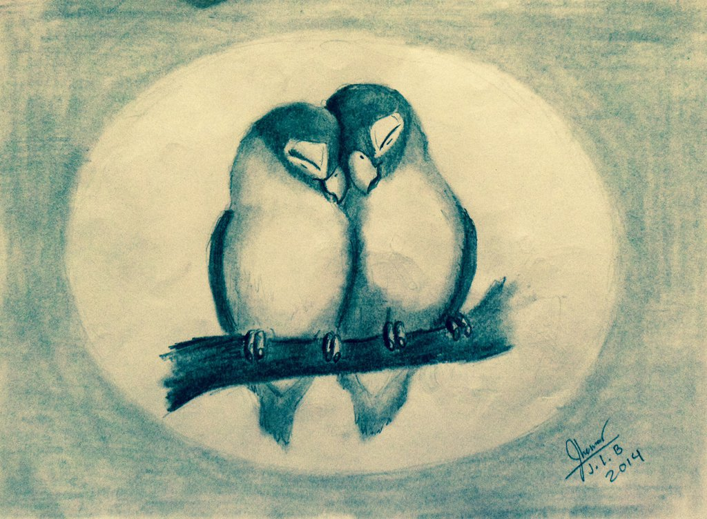 1024x752 Two Sweet Love Birds By Sammfeatblueheart