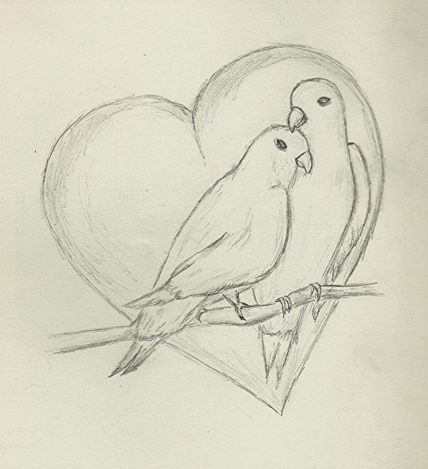 854x935 Love Birds Drawings In Pencil Love Birds Drawings In Pencil