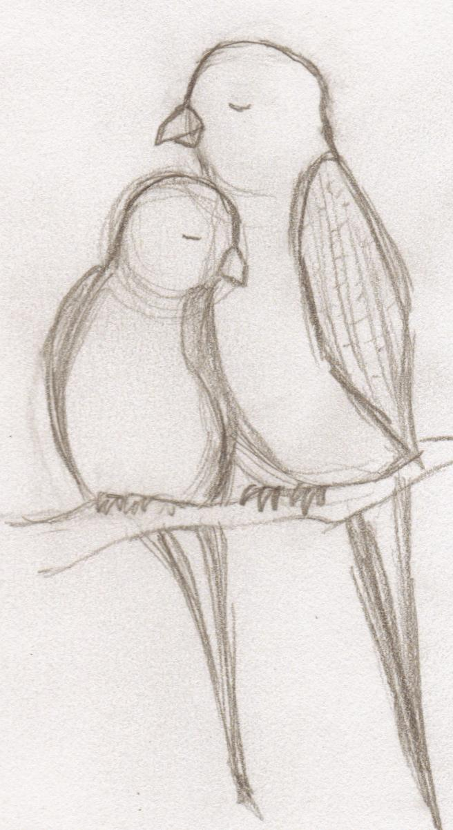 Love Birds Drawing Images at GetDrawings | Free download