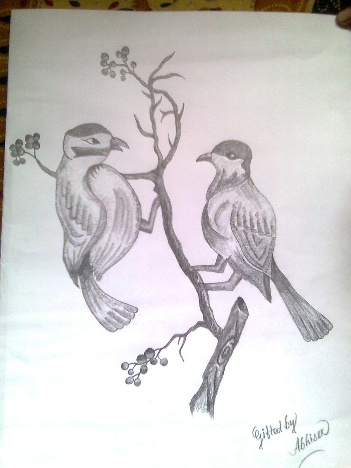 1200x1600 Photos Drawings In Pencil Love Birds,