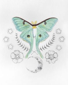 236x295 Luna Moth Flowers Moon Tattoos I Want Moth And Tattoo