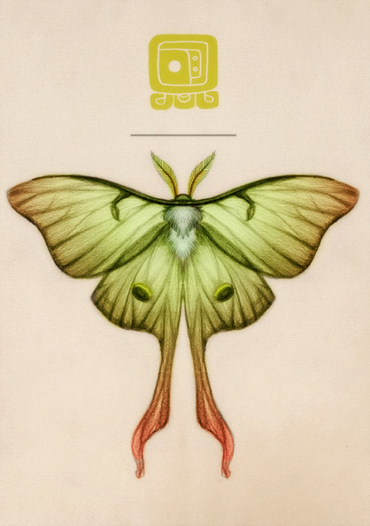 418x595 Moth Illustration
