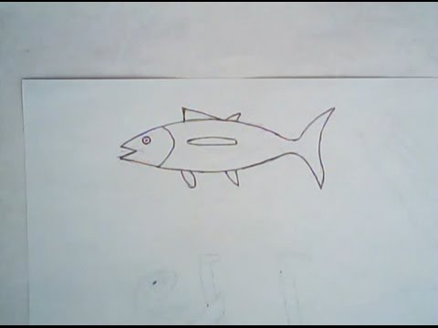 480x360 How To Draw An Albacore Tuna (Simple Drawing Tutorial)