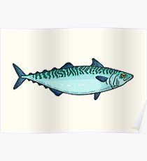 210x230 Mackerel Drawing Posters Redbubble
