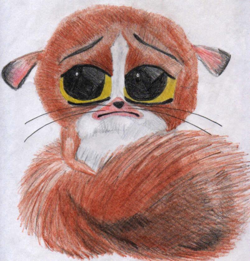 804x838 Cute Fuzzy Madagascar Thingy By Chazychaz