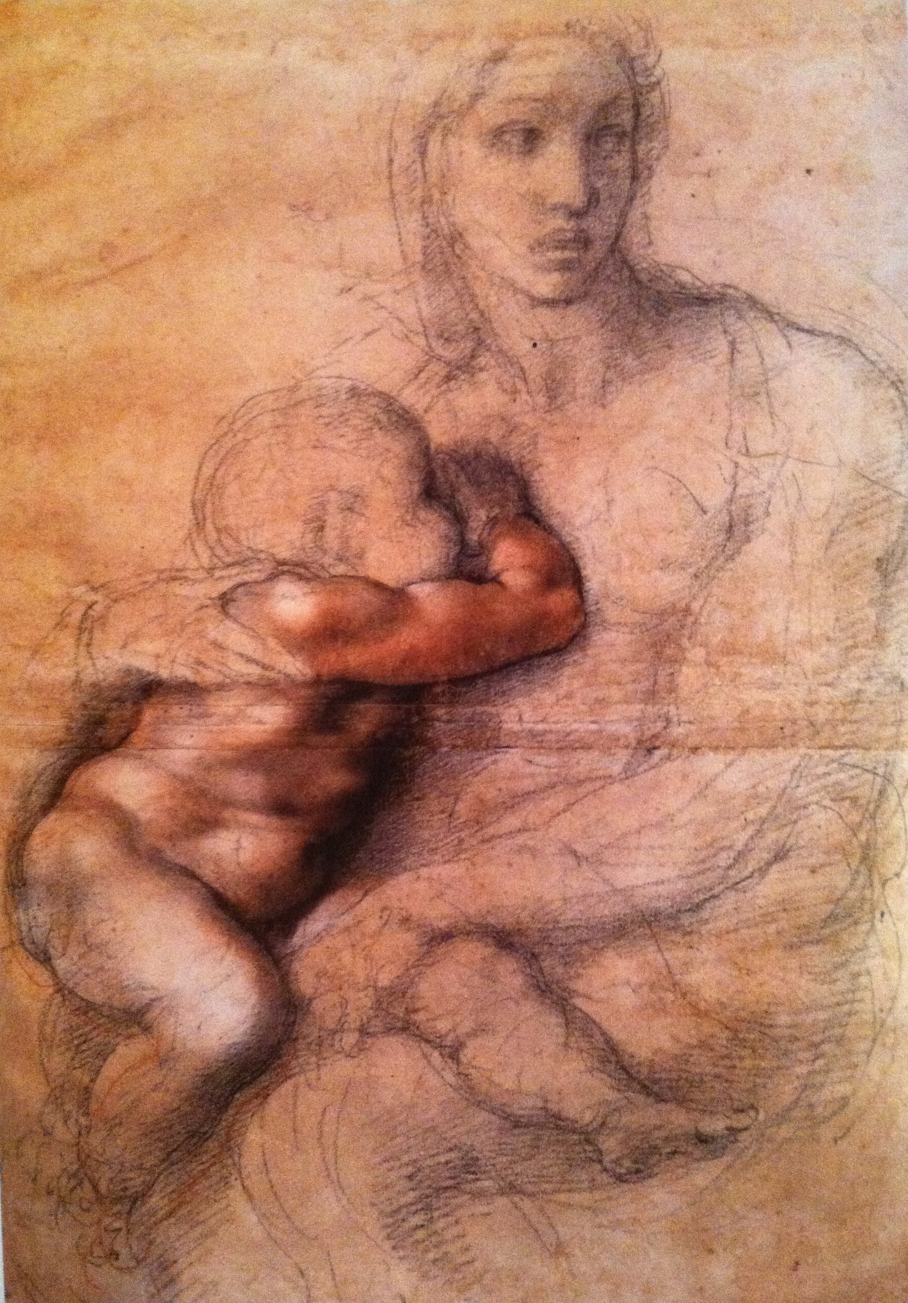 1778x2550 Madonna And Child Michelangelo Drawing