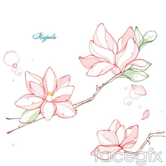 550x550 Magnolia Flower Line Drawing Vector Printables