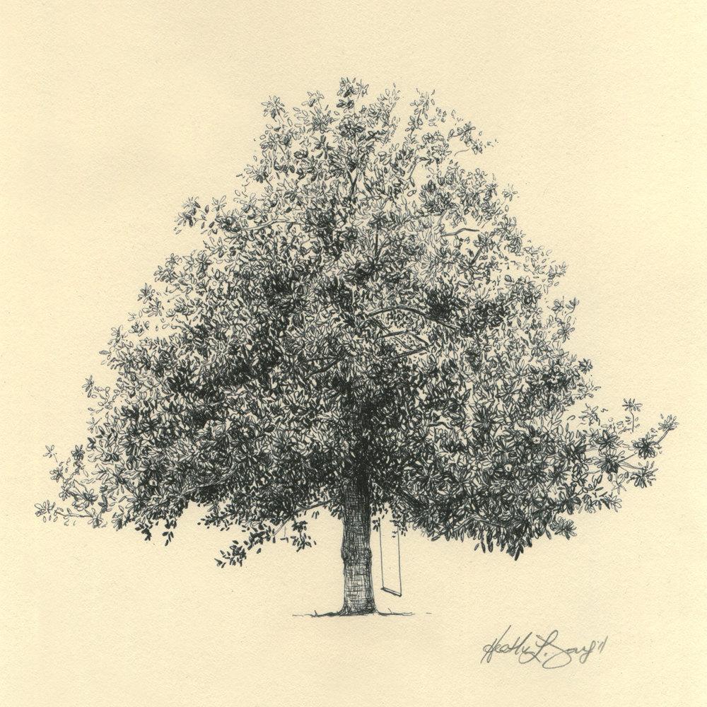1000x1000 Magnolia Tree Drawing Fine Art Print In Natural