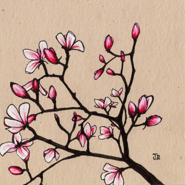600x600 Magnolia Wall Art, Pink, Fuscia, Jessica Doyle, Black, Tree