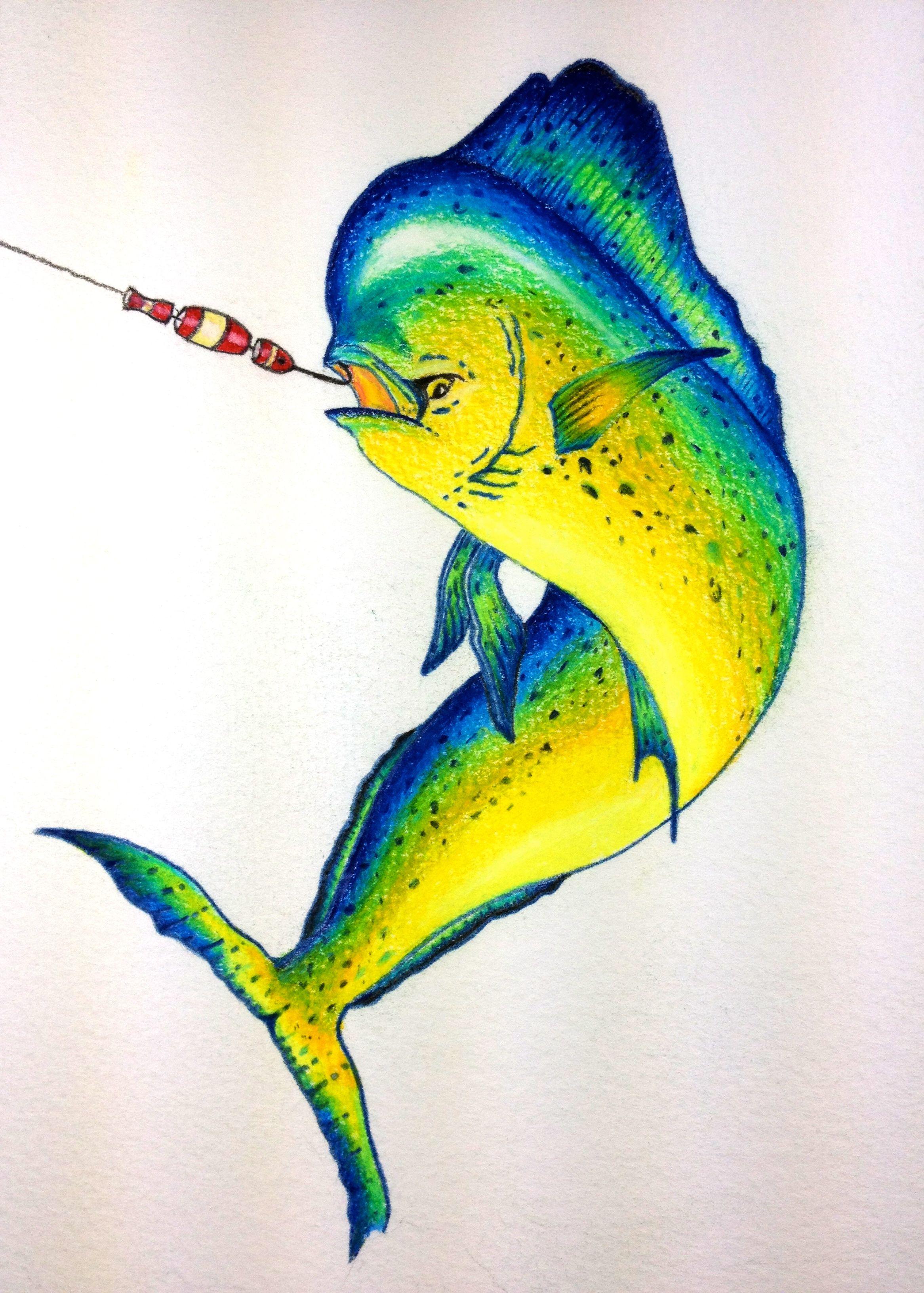 Mahi Mahi Drawing at GetDrawings.com | Free for personal use Mahi ...