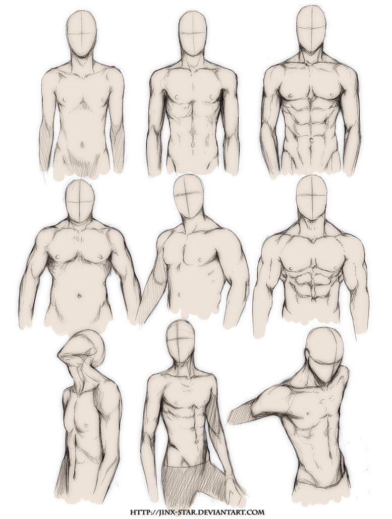 777x1027 How To Draw Realistic Bodies Body Type Study  By ~jinx Star
