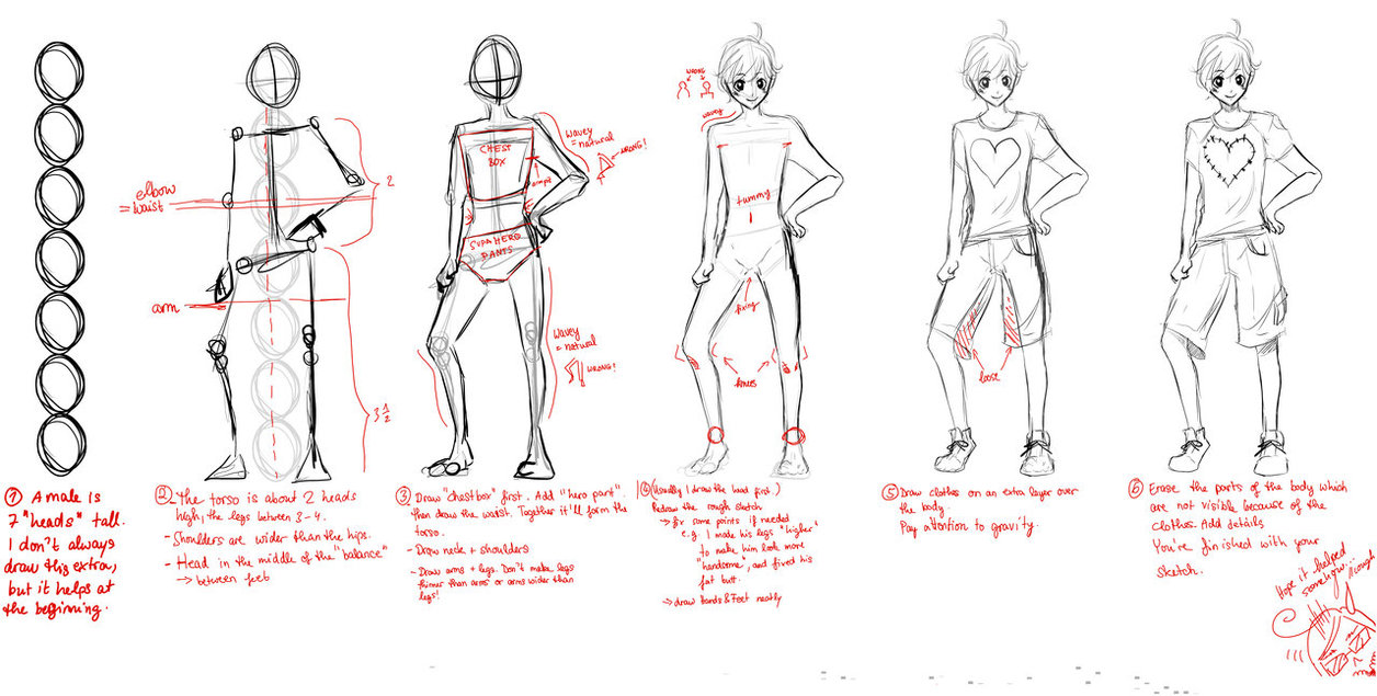 Male Body Proportions Drawing At Getdrawings Com Free For Personal