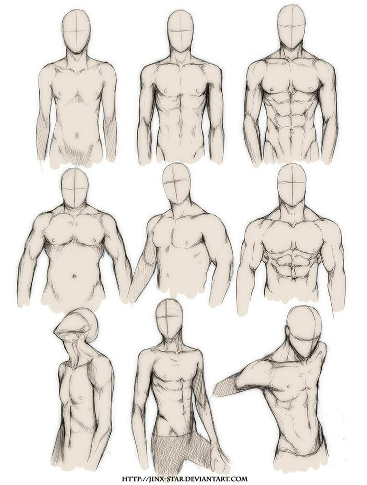 736x972 Male Upper Body Drawing Tips Upper Body, Art