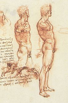 220x331 Figure Drawing