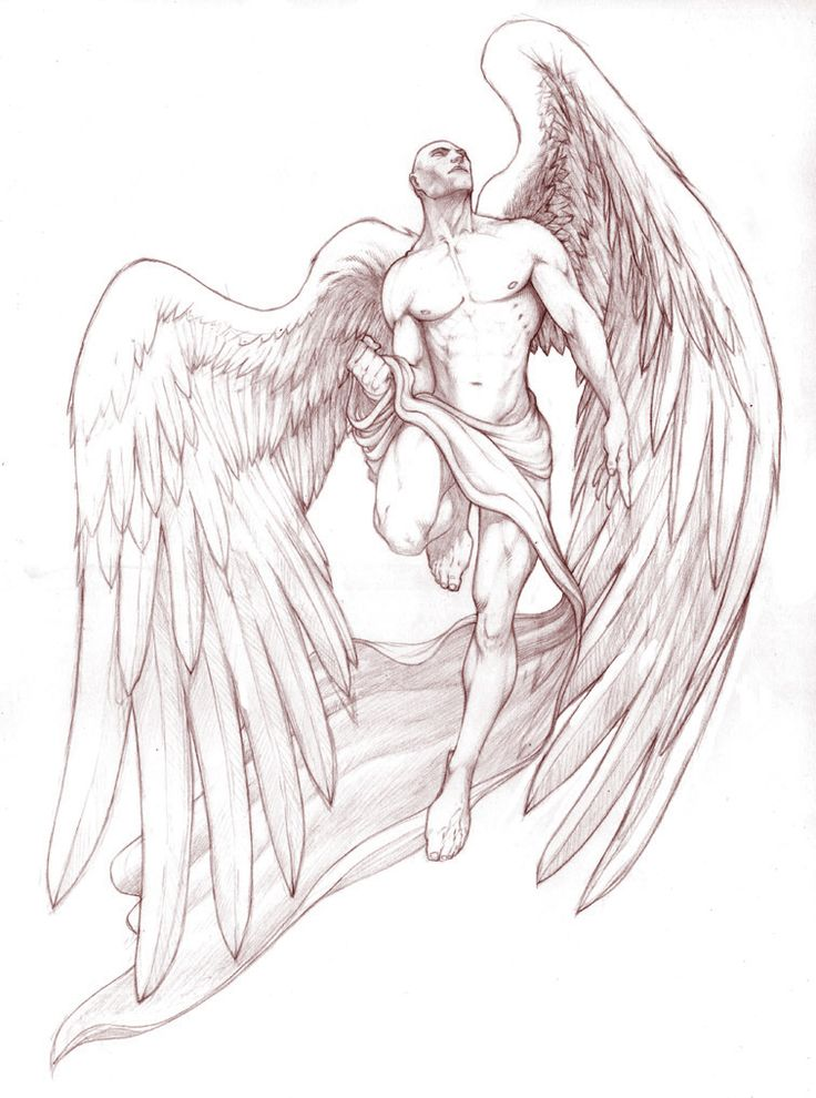 736x990 327 Best Angel Tattoos And Graphics Images On Demons