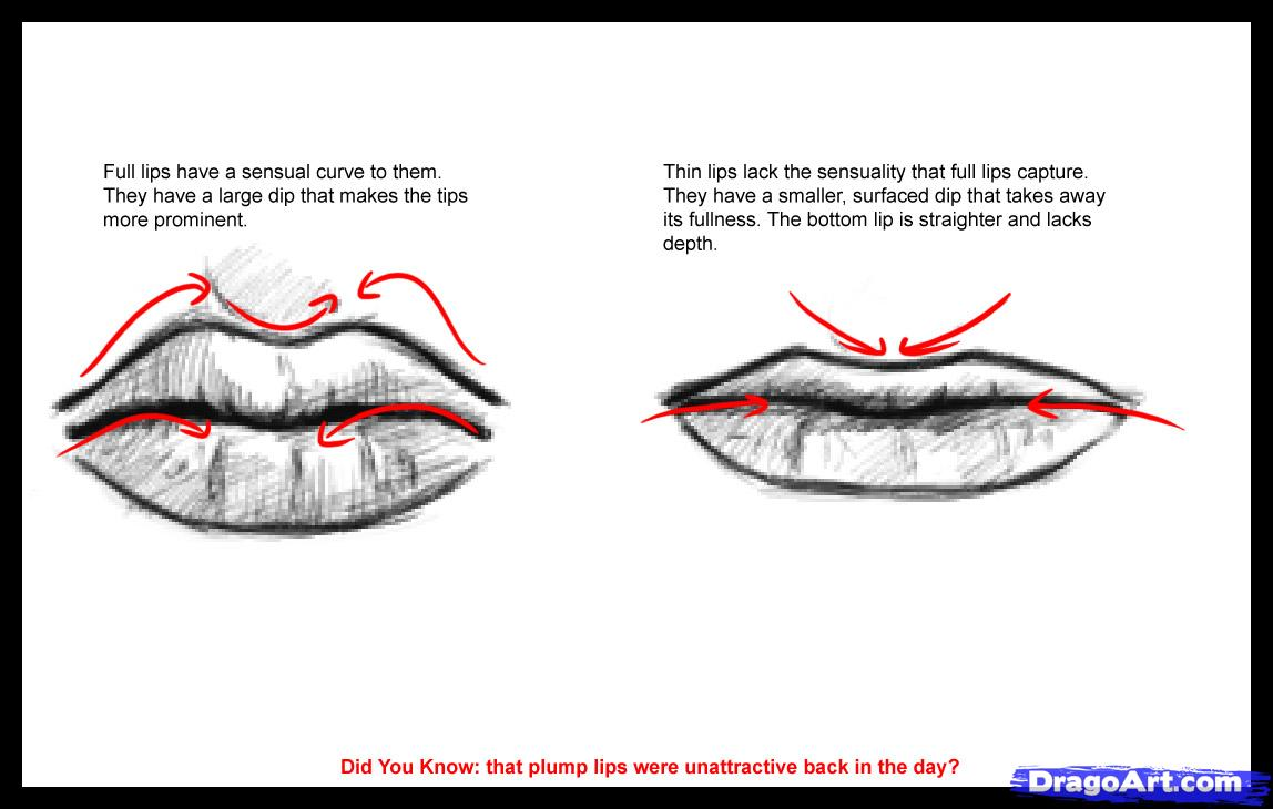 1148x730 The Most Comprehensive Drawing Tutorials Collection Drawing Lips